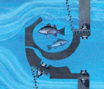 fish_screen.png?noresize